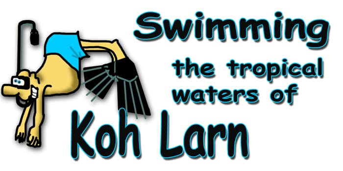 Swimming the tropical waters of Koh Larn